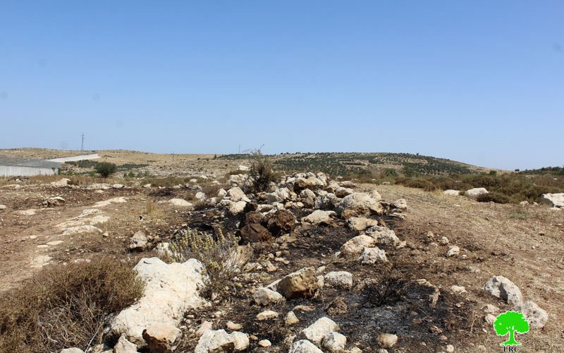 قوات الاحتلال تحرق محصول زراع في الأراضي الزراعية في بلدة إذنا  محافظة الخليل