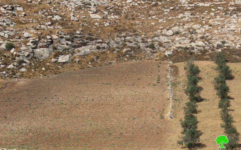 إخطار بوقف العمل في جدار من الأسلاك الشائكة بقرية فقيقيس
