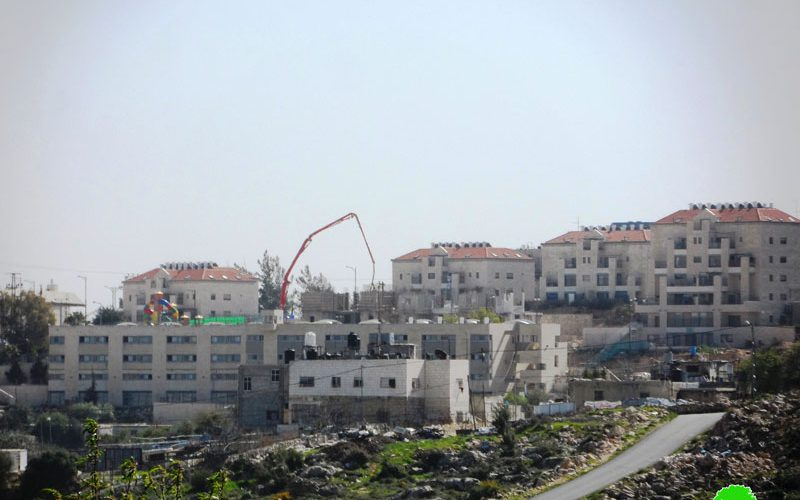 Israeli colonists establish new outpost east Hebron Governorate