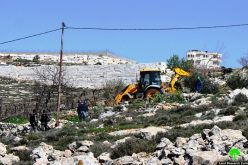 Israeli Occupation Forces demolish structures and ravage lands in Hebron