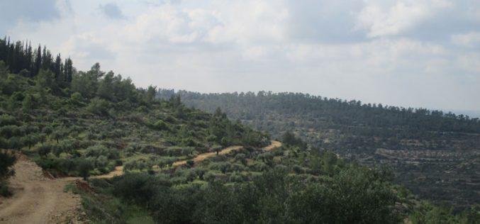 هدم منزل قيد الإنشاء في قرية جيبيا شمال مدينة رام الله
