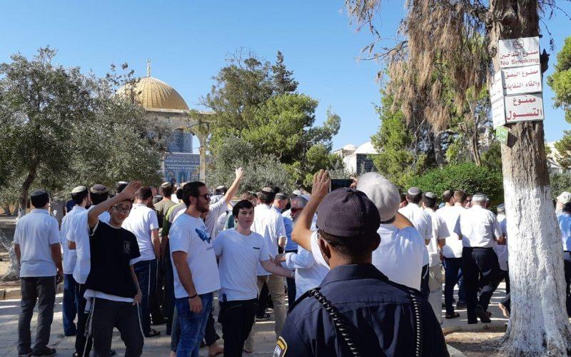 """مئات المستوطنون يقتحمون المسجد الأقصى في ذكرى ما يسمى """" خراب الهيكل المزعوم"""" / القدس المحتلة"""