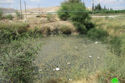 IOF halt rehabilitation work on an irrigation pool – Ein Ad-Beida/ Tubas governorate