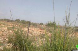 تجريف مساحات واسعة من الأراضي الزراعية لصالح توسعة مستعمرة بروخين  محافظة سلفيت
