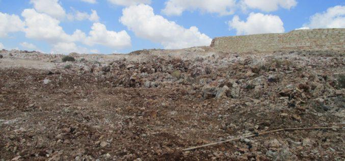 تجريف 82 دونماً ومئات أشجار الزيتون بهدف توسيع مستعمرة ليشم الإسرائيلية على حساب أراضي قرية دير بلوط  محافظة نابلس