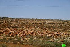 جيش الاحتلال يمنع تأهيل أراضي زراعية و يصادر جرافة بقرية صير محافظة قلقيلية
