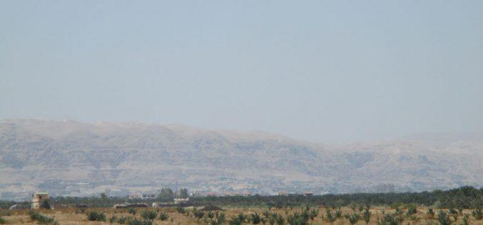 إخطار بإزالة 450 غرسة نخيل في منطقة دير أبو حجلة / محافظة أريحا