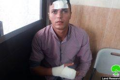 طرد عائلة من أرضها خلال قطفها لثمار الزيتون والاعتداء على أبنائها في قرية بزارية / محافظة نابلس