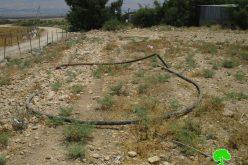 ردم فتحات مائية ومصادرة خطوط المياه للمرة الثانية في قرية بردلة / محافظة طوباس