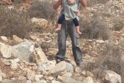 """مستعمرو """"بروخين"""" يجرفون أكثر من 30 دونماً في منطقة ظهر صبح شمال بلدة كفر الديك / محافظة سلفيت"""