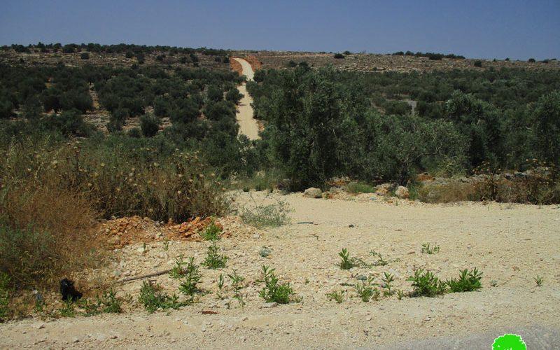 منع استصلاح ارض زراعية وتأهيل طريق زراعي في بلدة عزون / محافظة قلقيلية