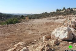Israeli occupation orders to stop the work in a land /Wad Al-Shajneh
