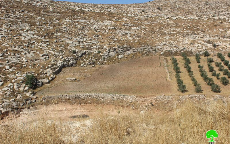 Stop-Work Orders in Fuqeiqis – Dura /Hebron