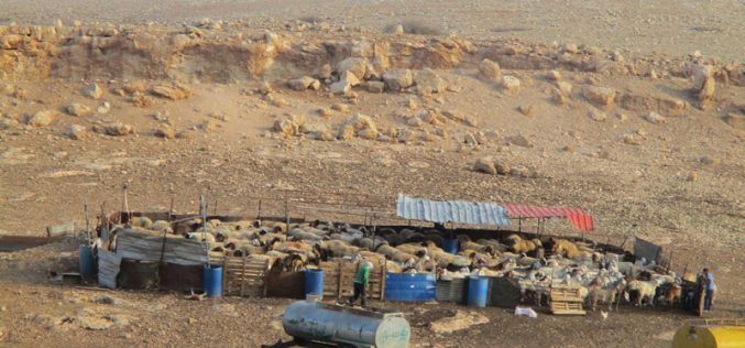 The Israeli occupation confiscated tents and barracks in Al-Hadidiya/ Tubas Governorate