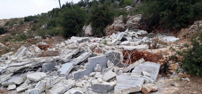 Ravaging 12 graves in Al-'Arrub Camp north Hebron