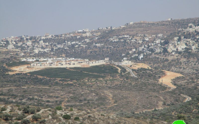 """Expanding colonial outpost """"Zeit Ra'anan"""" East Beitillu"""