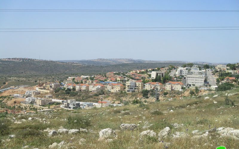 New colonial activity in Revava settlement/ Salfit governorate