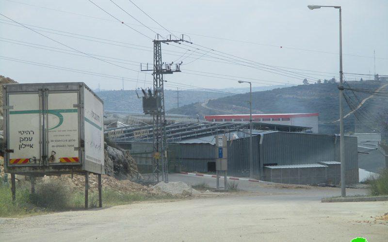 "Expanding Industrial settlement ""Immanuel""- Qalqilya governorate"