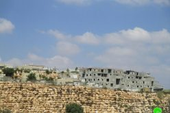 "Expanding ""Alei Zahav"" settlement – Kafe Ad-Dik –Salfit"