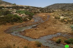 Amichai settlement imposes danger on Palestinian environment