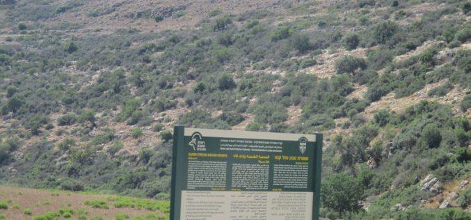 Judaizing The Salfit area of Wad Qana