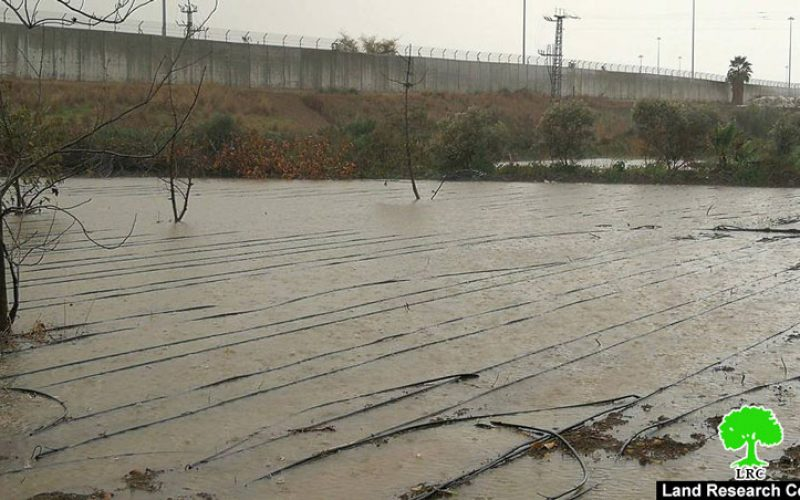 The apartheid wall floods agricultural lands /Tulkarim city