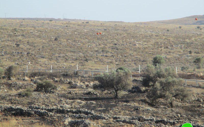 Israeli Troops Torch 22 Olive Trees – Az Zawiya / Salfit Governorate