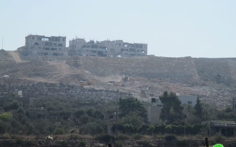 """Leshem"" is threatening Palestinian existence"