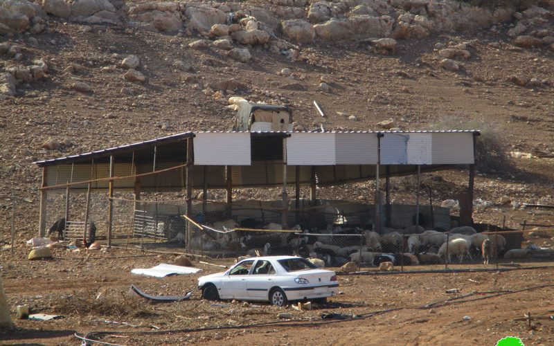 الاحتلال الإسرائيلي يخطر مواطناً بهدم منشآته السكنية والزراعية في منطقة ذراع عواد / محافظة طوباس