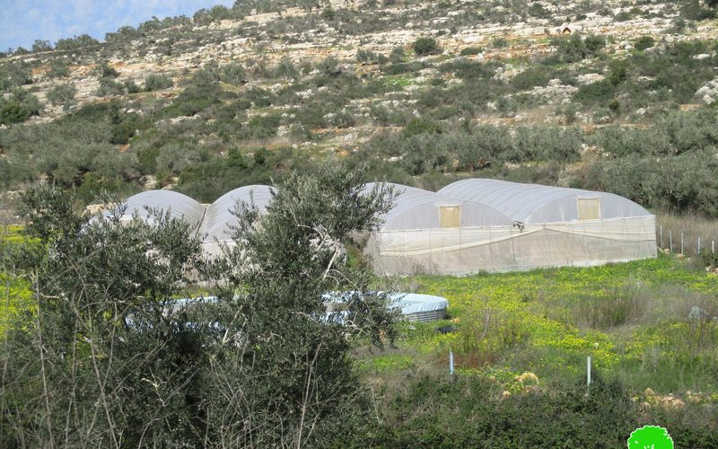 Serving Halt of work order on a farm in Azun Atmeh / East Qalqilya