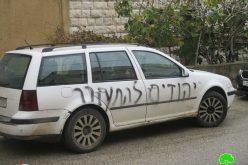 """جريمة أخرى بحق الممتلكات الفلسطينية في قرية ياسوف على يد مستعمري مستعمرة """" كفار تبواح"""" / محافظة سلفيت"""