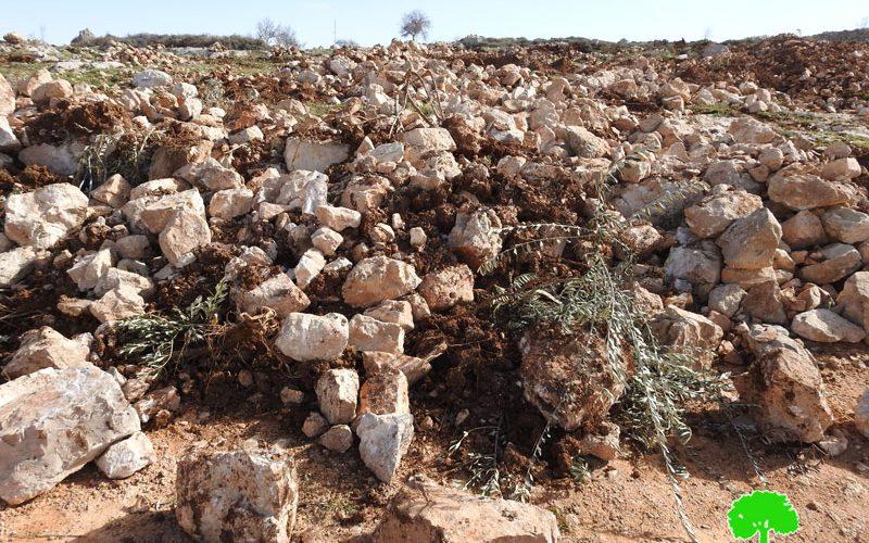 الاحتلال يجرف أراضي المواطنين في جبل السروج جنوب الخليل