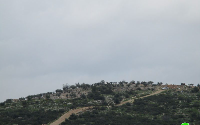 The Israeli occupation halt work on an agricultural road in Deir Ballut town / Salfit governorate