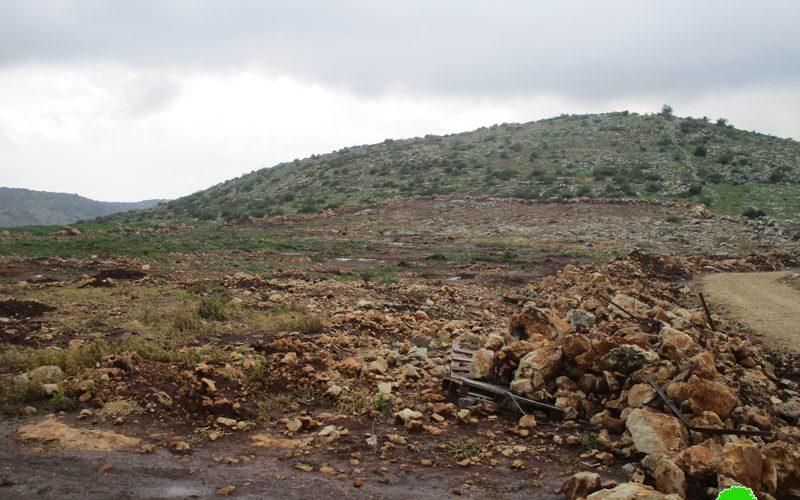 جيش الاحتلال يقتلع 155غرسة زيتون من أراضي بلدة برطعة الشرقية / محافظة جنين
