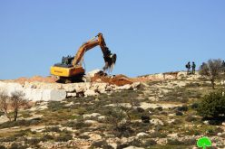 Land ravaging in Wadi Al Samin/ South Hebron
