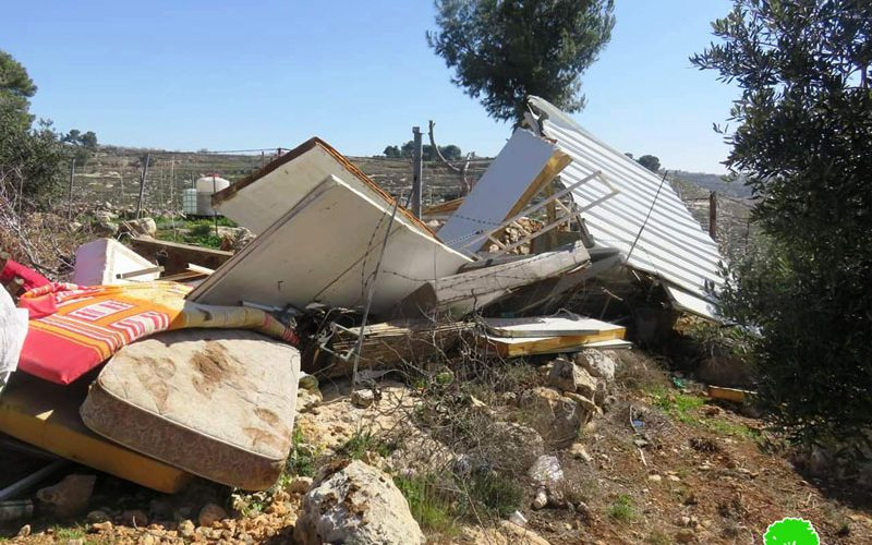 Demolition of an agricultural room and a water pool in Al-Tayba – East Tarqumiya / Hebron governorate