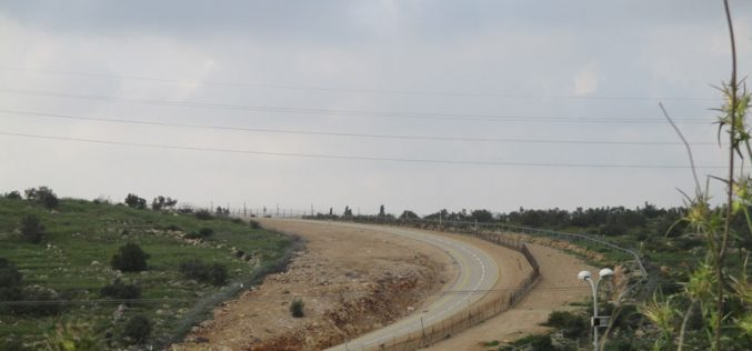 Extending the validity of a land grab in Budrus / Ramallah governorate
