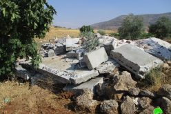 Demolition of an irrigation pool in Al-Aqaba/ Tubas governorate