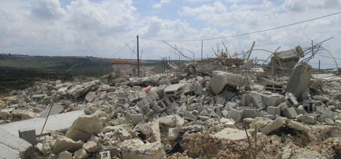 اقتلاع ومصادرة 50 شتلة زيتون في خلة الضبع شرق يطا / محافظة الخليل