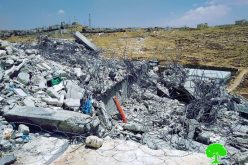 Israeli troops demolish a building and a cistern south Hebron