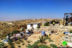 IOF demolish a residence in Khallet Ad-Dabe'a – Masafer Yatta / Hebron governorate