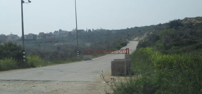 Setting up a Metal Gate on Bruqin Western Entrance / Salfit Governorate