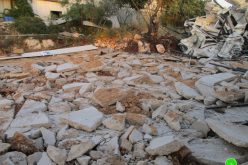 The Israeli occupation forces demolish a facility in Haris village / Salfit governorate