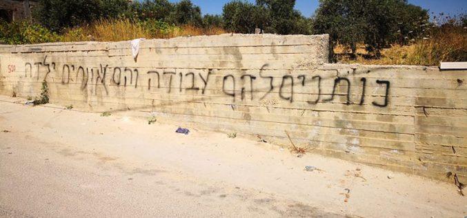 """مستعمرو """" تدفيع الثمن"""" يعتدون على الممتلكات الفلسطينية في بلدة سنجل/ محافظة رام الله"""