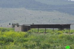 The Israeli Occupation Targets Agricultural Facilities in Al-Aqaba/ Tubas Governorate