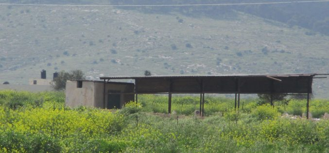 الاحتلال يخطر منشآت زراعية وآبار في قرية العقبة / محافظة طوباس