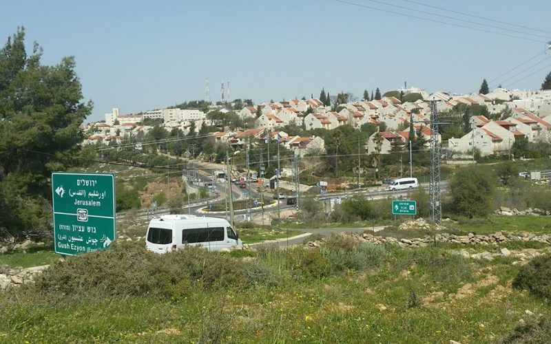 Monitoring Report on the Israeli Settlement Activities in the occupied State of Palestine – January 2019