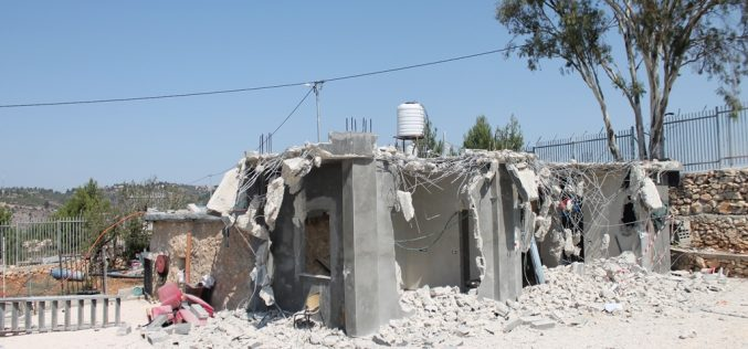Monitoring Report on the Israeli Settlement Activities in the occupied State of Palestine – June 2019
