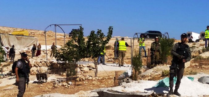 IOF Dismantle and Confiscate a Tent – Al-Mafqara Village East Yatta / Hebron Governorate