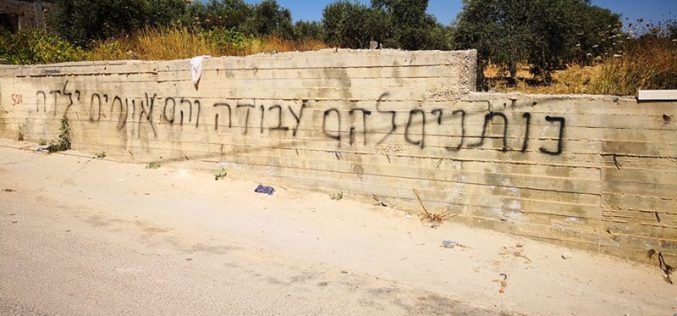 """Price tag"" Settlers Sabotage Palestinian Properties in Sinjil Village / Ramallah Governorate"